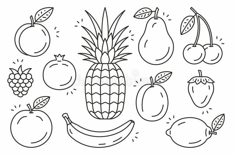 Fruits icon set vector illustration