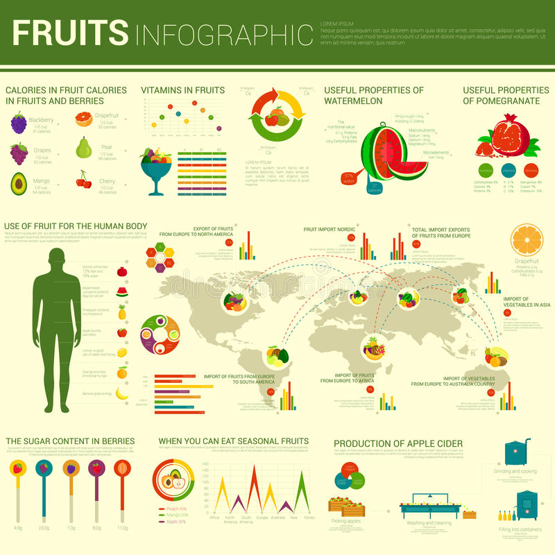 Fruits infographic design with different charts stock vector fruits infographic design with charts and world map berries as blackberry and cherry grapes and mango grapefruit and pear cherry and watermelon gumiabroncs Images