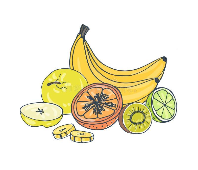 Fruits juteux exotiques de totalité et de coupe se trouvant ensemble d'isolement sur le fond blanc - pomme, banane, kiwi, orange, illustration de vecteur