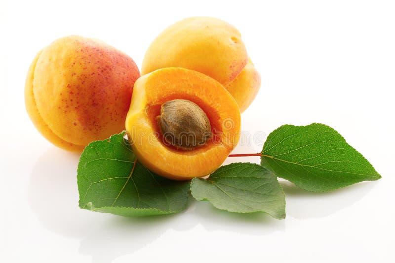 Fruits juteux mûrs et feuilles vertes de fin d'abricot  images stock