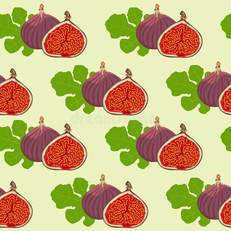 Fruits and leaves of fig. Seamless texture of the fruits and leaves of fig. It is used as the background royalty free illustration