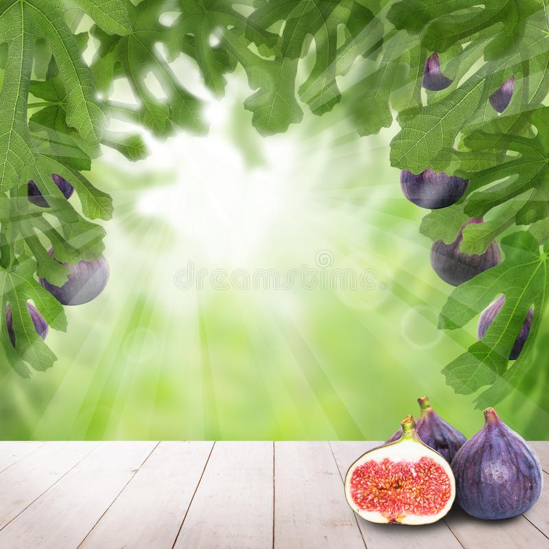 Fruits on light wooden table in garden. Sunlight background concept royalty free illustration