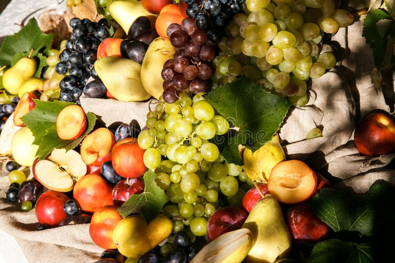 Fruits are lying on the cloth, warmed by the evening sun stock photo