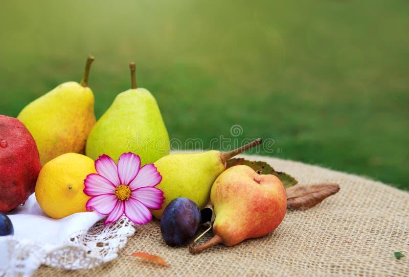 Fruits mélangés frais sur la nappe brune d'isolement sur le fond vert images libres de droits