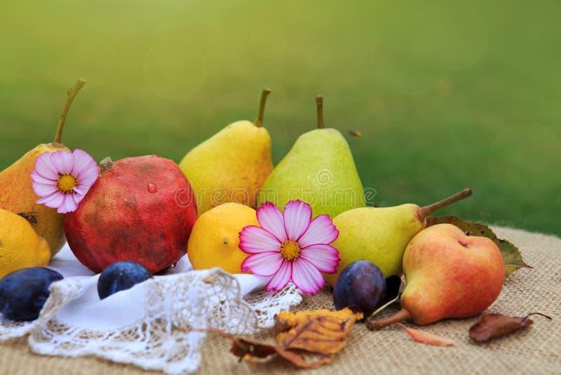 Fruits mélangés frais sur la nappe brune d'isolement sur le fond vert photo stock