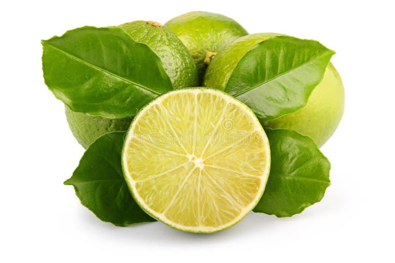Fruits mûrs de limette avec des lames de vert d'isolement images stock
