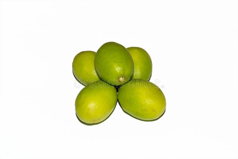Fruits mombin de Spondias ou de dulcis verts frais de Spondias sur le fond blanc photos libres de droits