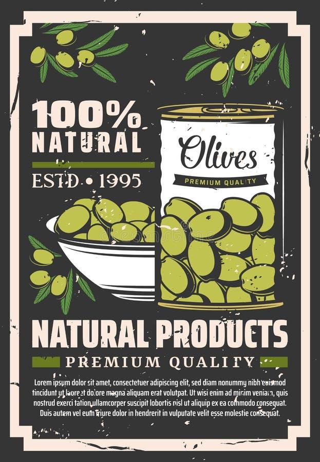 Fruits olives verts marinés dans la boîte en fer blanc et la cuvette illustration libre de droits