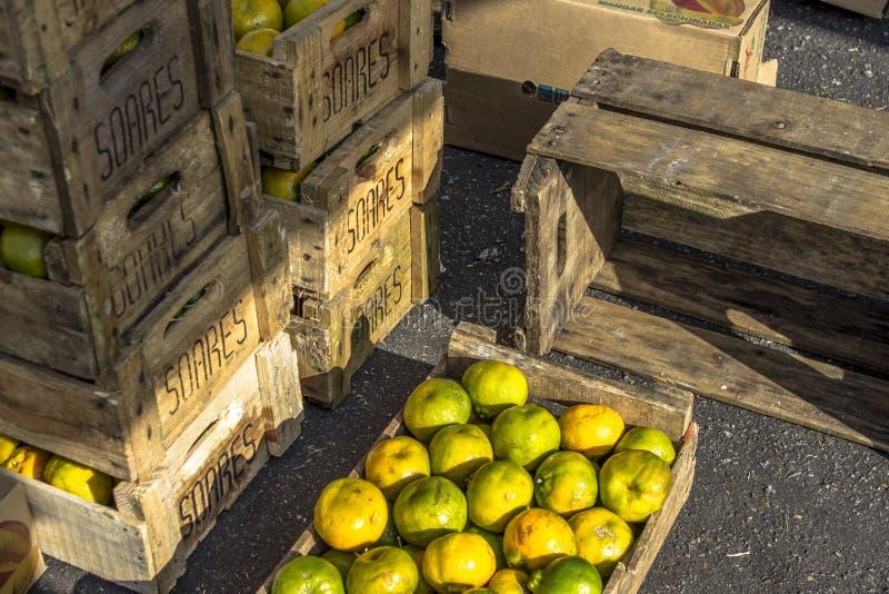 Fruits oranges au marché en plein air photo libre de droits