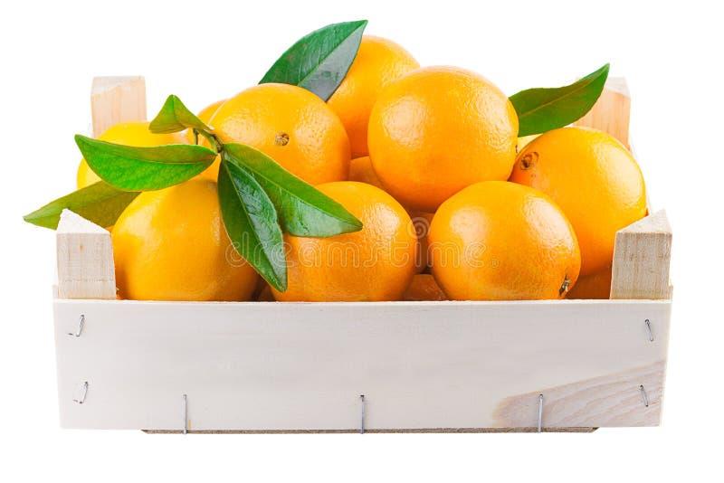 Fruits oranges dans une boîte en bois image libre de droits