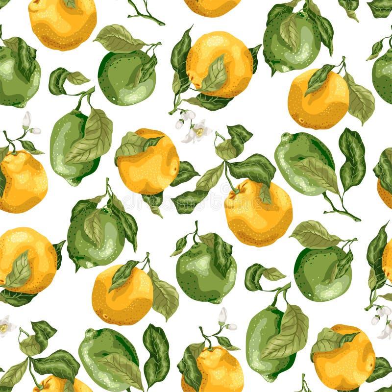 fruits pattern seamless Свежие апельсины и известки с flowe иллюстрация штока