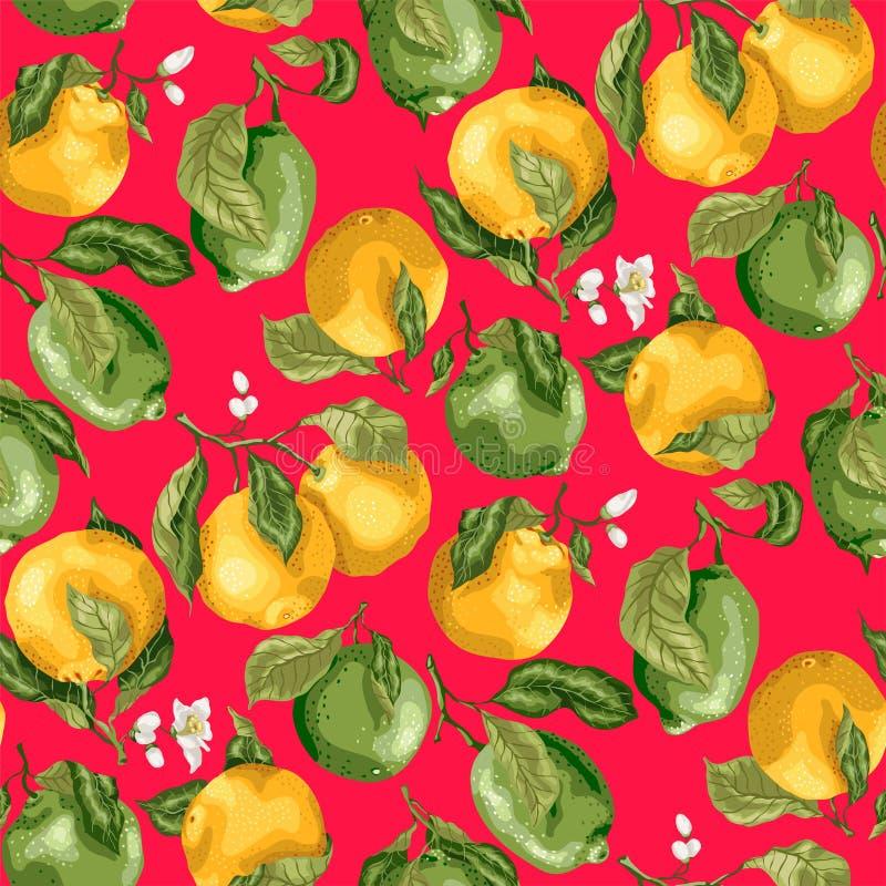 fruits pattern seamless Свежие апельсины и известки с flowe бесплатная иллюстрация