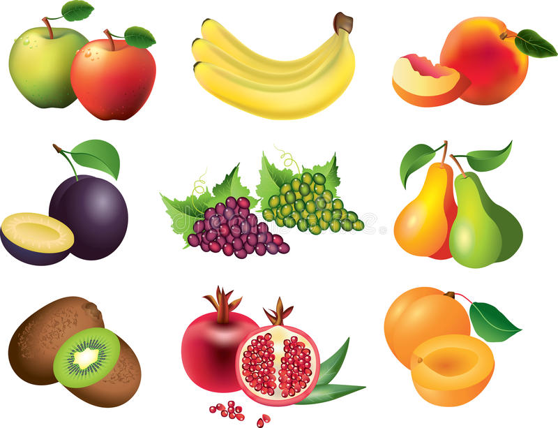Fruits photo-realistic set. Fruits photo-realistic detailed set stock illustration