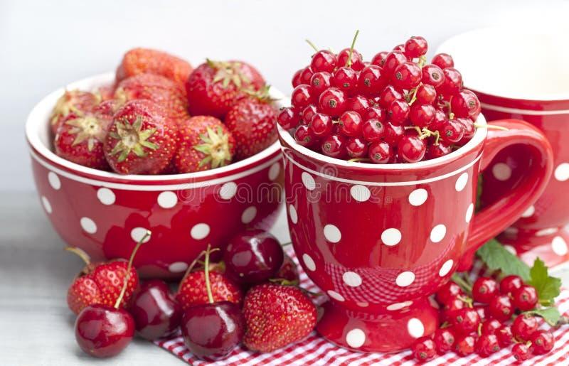 Fruits rouges d'été dans la polka Dot Mug image libre de droits