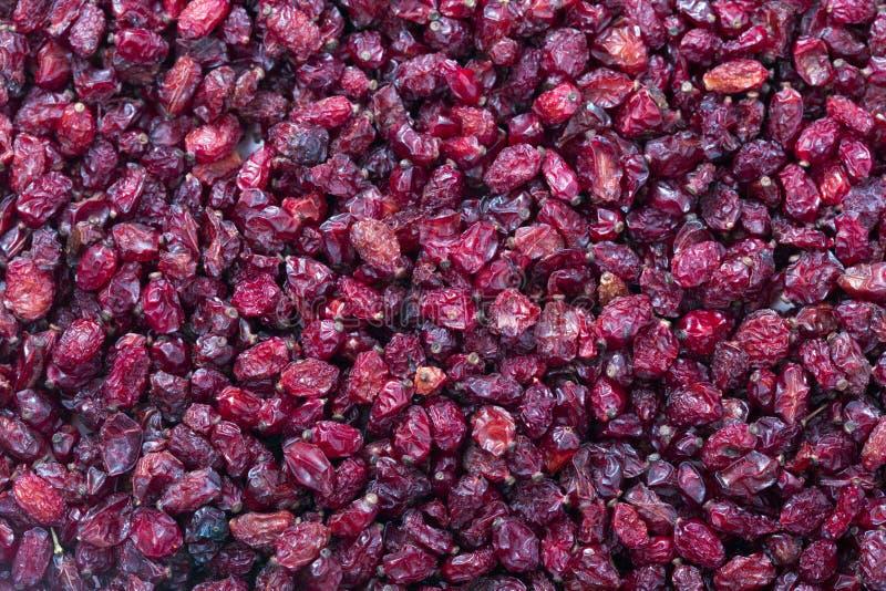 Fruits secs par groseille à maquereau photographie stock libre de droits