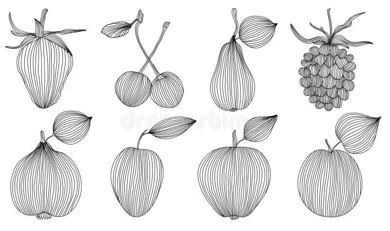 Download Fruits set stock vector. Illustration of shape, element - 28482627