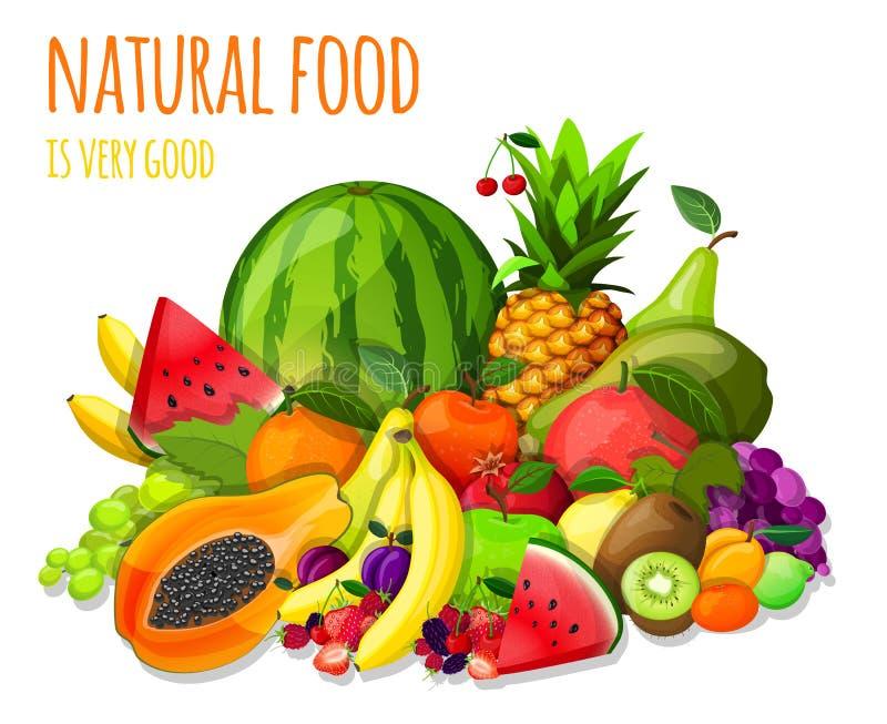 Fruits set still life. Natural organic fruits and berries set still life with watermelon apple kiwi grape vector illustration vector illustration