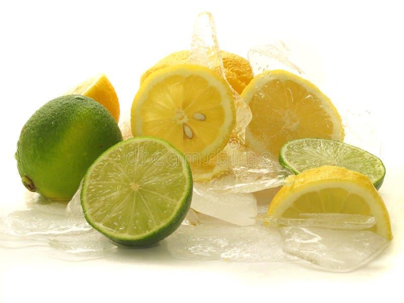 Fruits sur la glace images stock