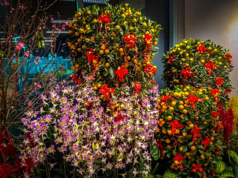 Fruits on the tree, Flowers on the tree, Singapore Airport, Singapore Nature stock photography