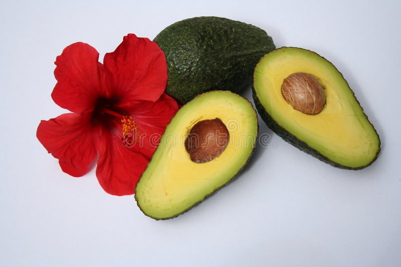 Fruits tropicaux photographie stock