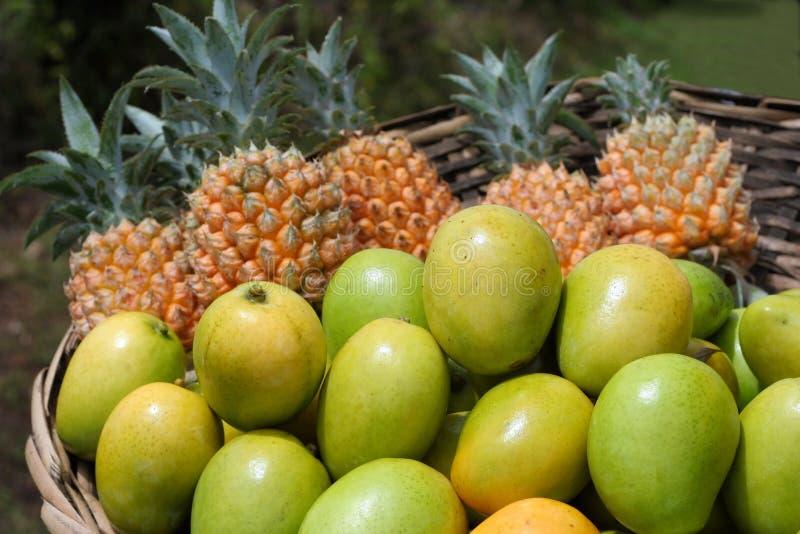 Fruits tropicaux photographie stock libre de droits