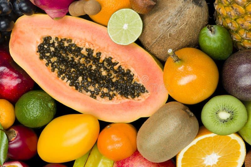Fruits tropicaux exotiques photo libre de droits