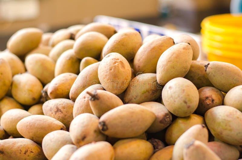 Fruits tropicaux, sapotille ou fruit de chiku sur le marché de produits frais photo libre de droits