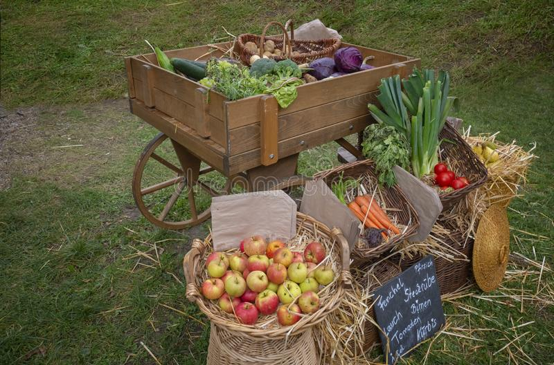 Fruits and vegetables in baskets. Cabbage, tomatoes, apples, zucchini, onions, pears, carrots, beets, potatoes, parsley. Reconstruction of historical events royalty free stock image