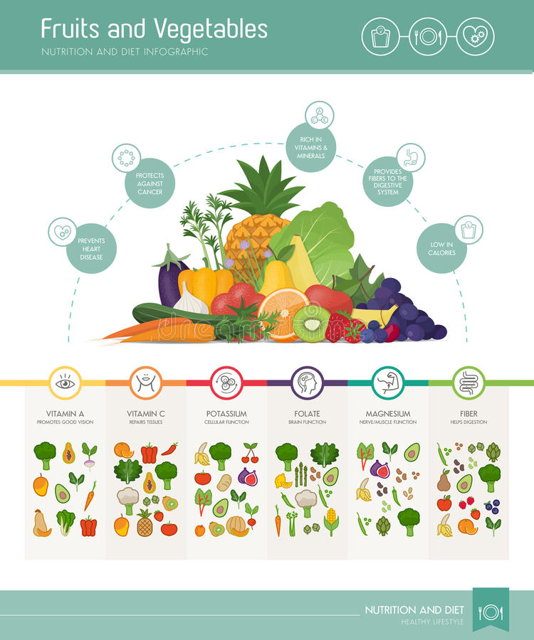 Fruits and vegetables nutrients and benefits. Infographic with vegetabels composition and icons set royalty free illustration