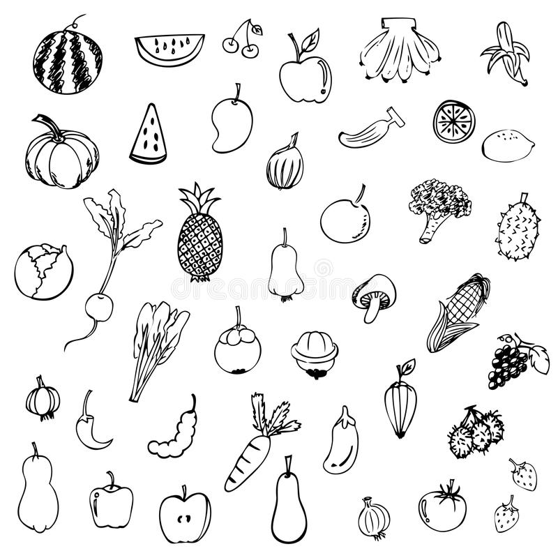 Fruits and vegetables sketch vector in black doodle on white background stock illustration