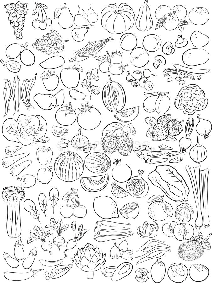 Fruits and vegetables. Vector illustration of fruits and vegetables in line art mode stock illustration