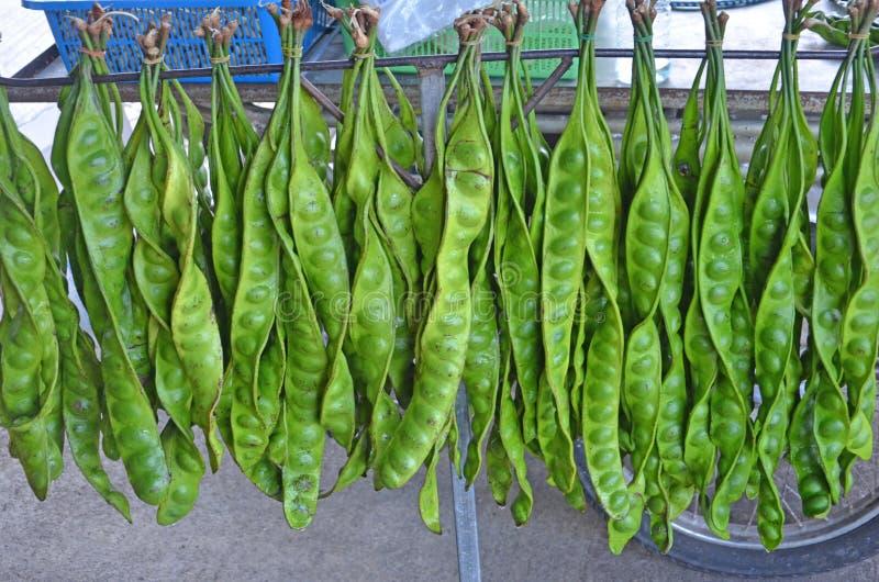Fruits verts accrochants avec des rangées de vente de graine pour la nourriture photographie stock libre de droits