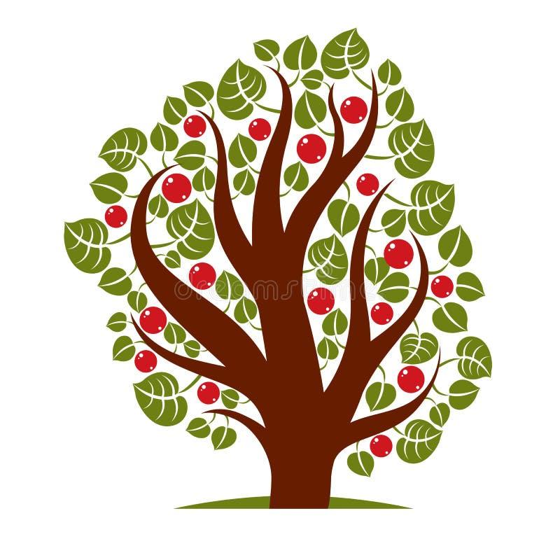 Fruity дерево при зрелые яблоки изолированные на белизне Органический и eco иллюстрация штока