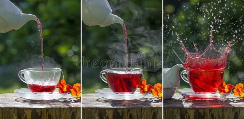 Fruity чай на таблице сада стоковая фотография rf
