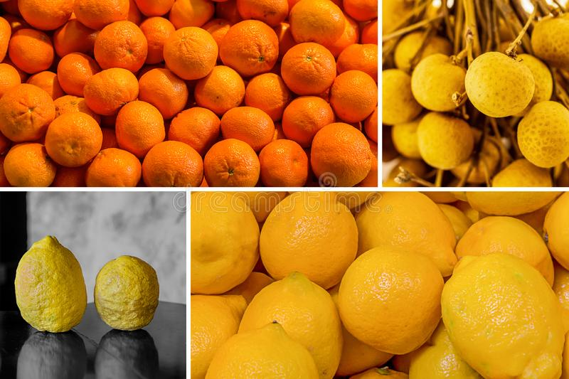 Fruity jaskrawy pogodny kolażu stos tangerines i cytryna para dzikie cytryny z szorstką skórą i soczystym longan projektujemy fotografia royalty free