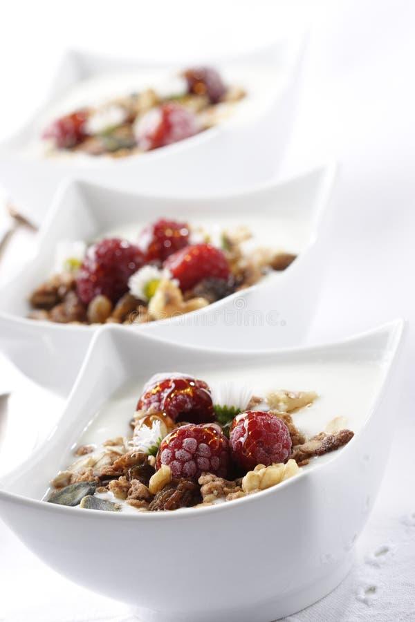 fruity muesli стоковые фото