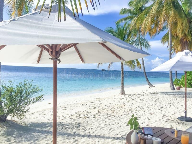 Frukost på stranden royaltyfri bild