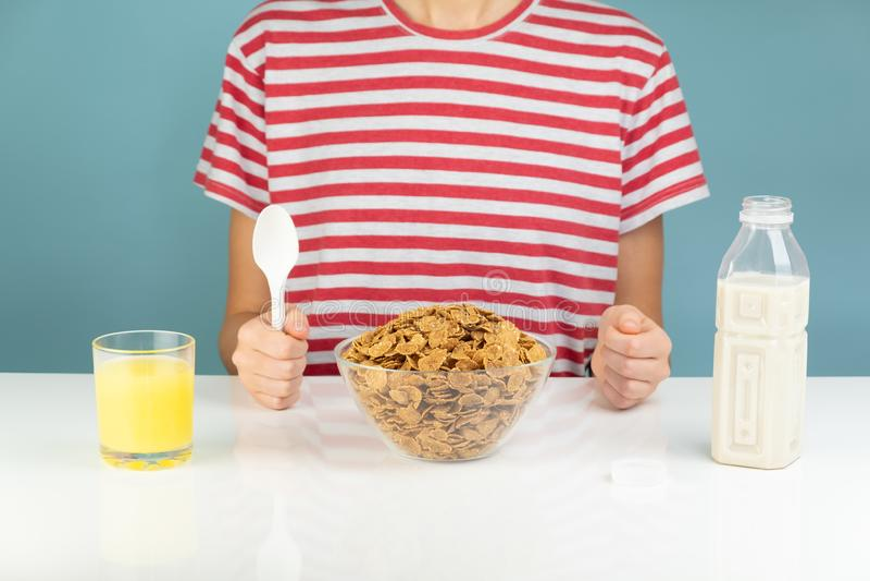 Frukosten med hela kornsädesslag, mjölkar och fruktsaft illustrativt royaltyfria foton