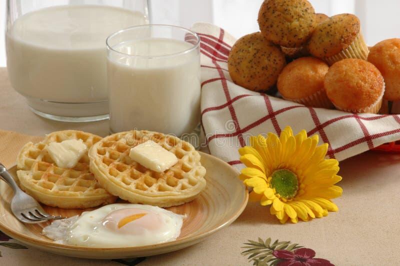 frukostera landet royaltyfria bilder