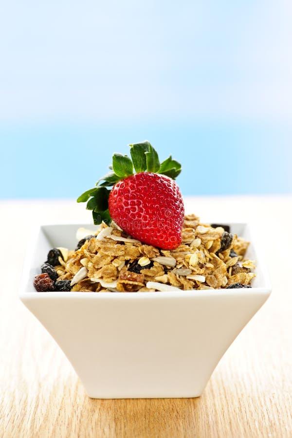 frukostsädesslaggranola royaltyfri foto