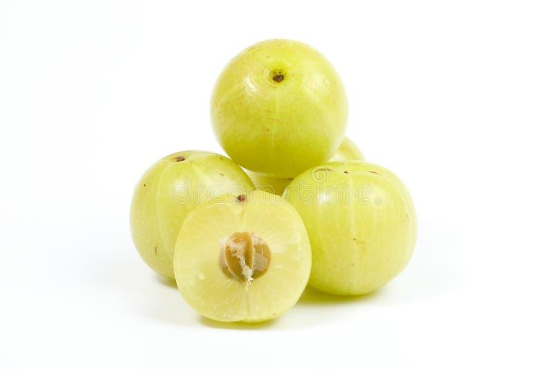 Frukt för Phyllanthus emblicabär royaltyfri bild