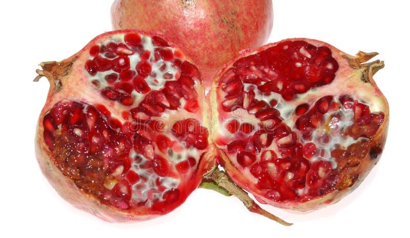 frukt grenada royaltyfri foto