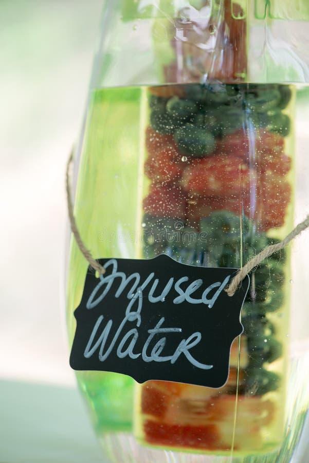 Frukt ingett vatten fotografering för bildbyråer