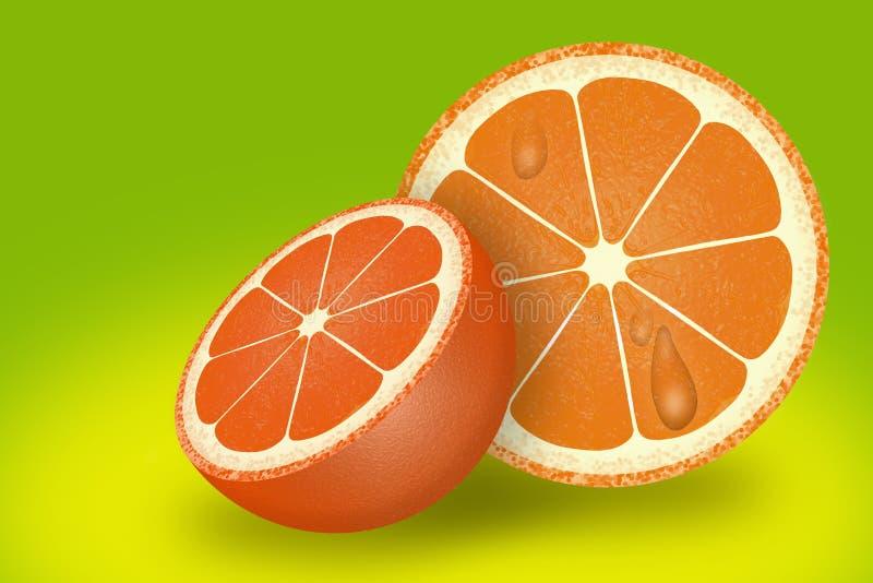 Frukt jordbruksprodukter, citrus, apelsin arkivbild