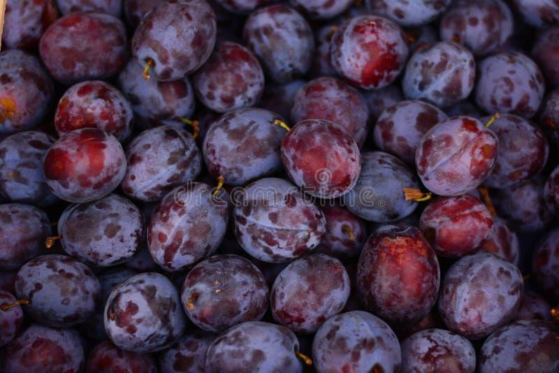 Frukt jordbruksprodukter, mat, lokal mat