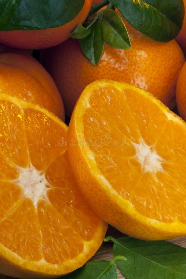 Frukt - mandariner arkivbild