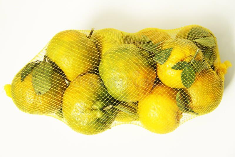Frukt Minas Gerais, Brasilien för bakgrund för organisk familj för tangerin åkerbruk vit royaltyfria foton