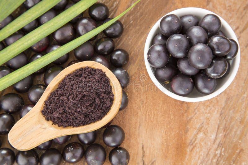 Frukt- och acaipulver - Euterpeoleracea arkivfoton