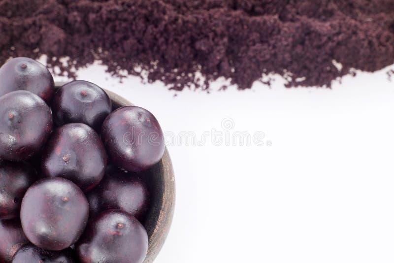 Frukt- och acaipulver - Euterpeoleracea royaltyfria foton