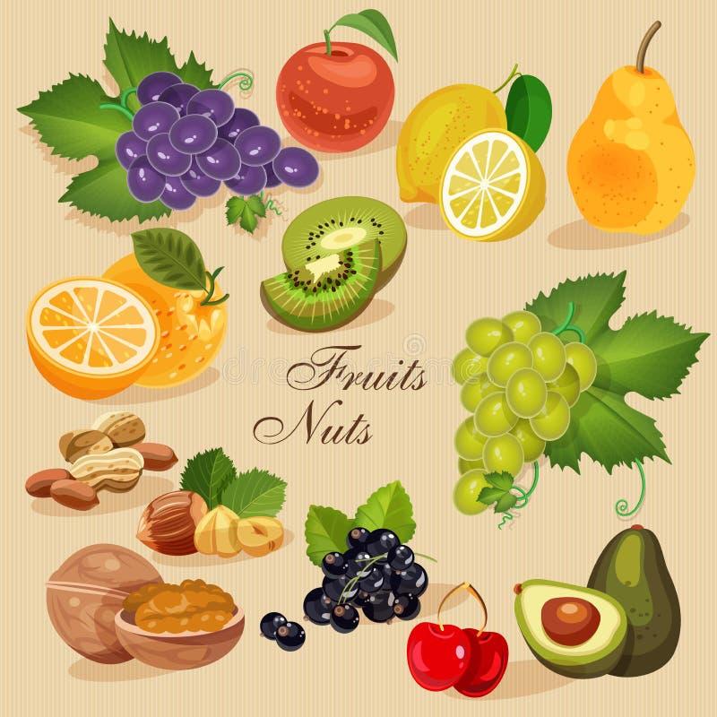 Frukt och bär för skörd saftig grön livsmedelsbutik stock illustrationer